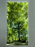 Leuchtbild Flat frameless
